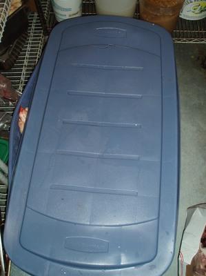 Pig_coffin